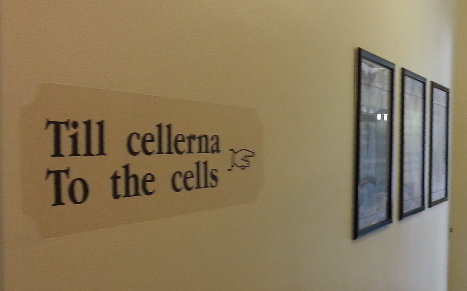 To the cells